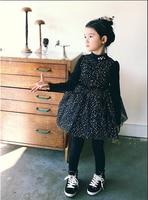 קטיפה החורף קוריאני בנות g mesh שמלת טוטו נסיכת בגדי תינוקת סיטונאי שמלת מסיבת 5 יח'\חבילה קטיפה שחורה