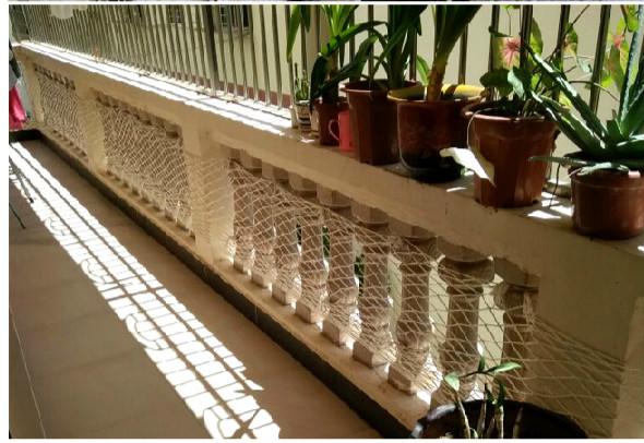 Best Of Balcony Child Safety