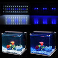 Aquarium Fish Tank SMD LED Light Lamp 6W 28 CM White + Blue 2 Mode Extendable With EU Power Plug