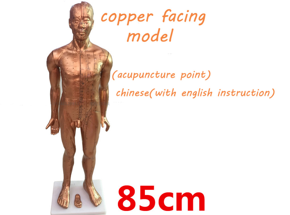 Copper facing plastic acupuncture point model traditional Chinese medical body model 85cm high model free shipping english medical female human body acupuncture point model 48cm