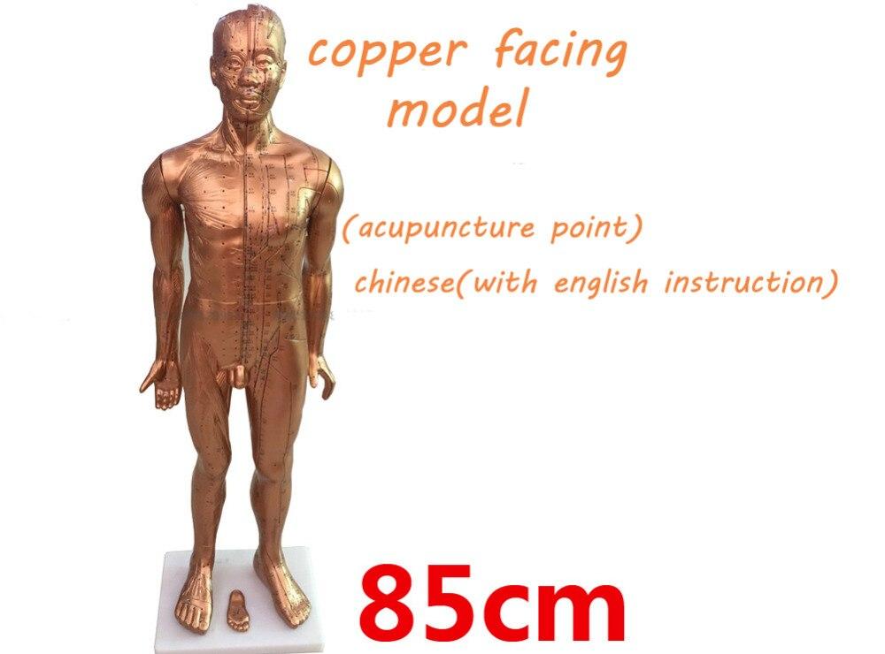 Modèle de point d'acupuncture en plastique de revêtement en cuivre modèle de corps médical traditionnel chinois modèle de 85cm de hauteur