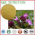 High purity Natural Indigo Naturalis Extract powder 10:1