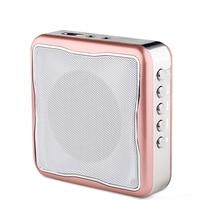 LNBEI T6 mini bee megaphone speakers dedicated wireless portable speaker for teacher tour guide