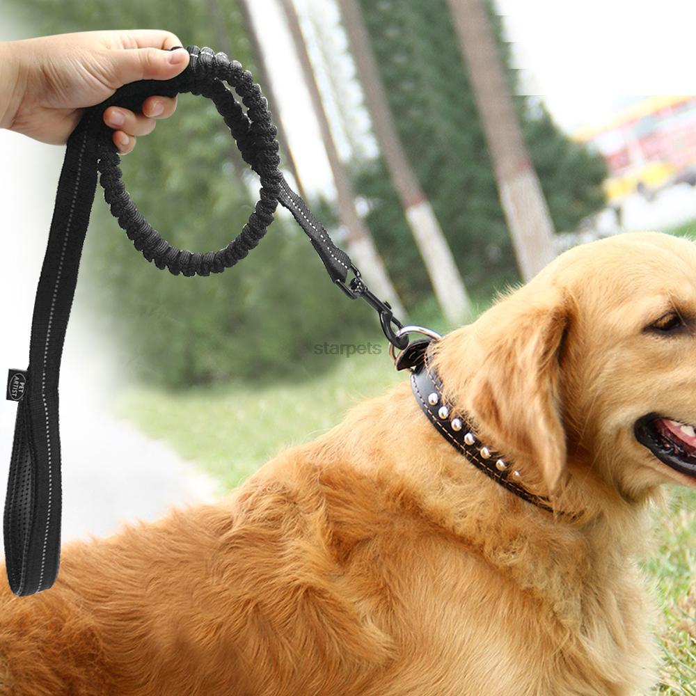 Correa de perro elástica Bungee reflectante con elástico Paseos - Productos animales - foto 2