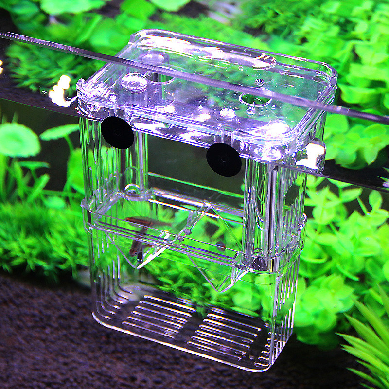 Fish Breeding Isolation Box Incubator for Fish Tank Aquarium Accessory Convenient ...