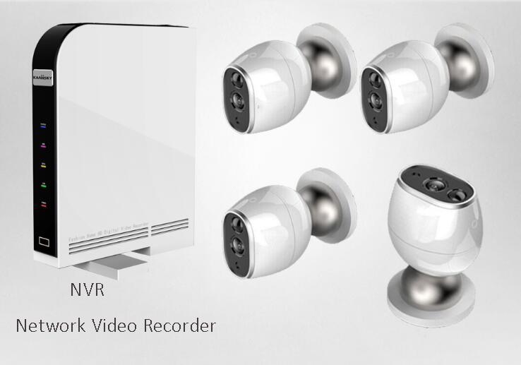 NVR kit