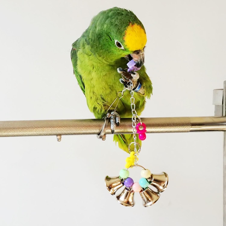 Pet Bird Toys : Popular lovebird supplies buy cheap lots