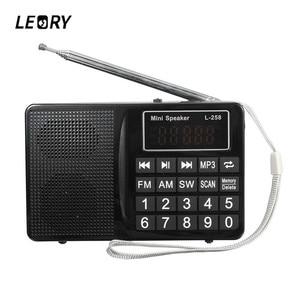 LEORY L-258 TF FM/AM/SW Multib