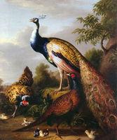 Handgeschilderde moderne muur art foto woonkamer interieur olie schilderen op canvas olieverf vogels pauwen met kip in view