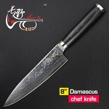 HAOYE 8 zoll kochmesser Damaskus küchenmesser hochwertige Japanische vg10 stahl sushi fischmesser micarta griff freies verschiffen
