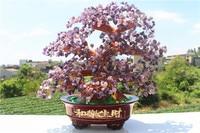 NATURAL Purple crystal quartz gemstone TREE REIKI Healing