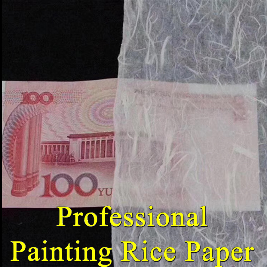 Professional thin Painting Paper Chinese Yunlong rice paper for Artist painting Calligraphy drawing painting supply archaistic chinese rice paper cardboard for gongbi painting calligraphy blinding notebook painting canvas paperboard