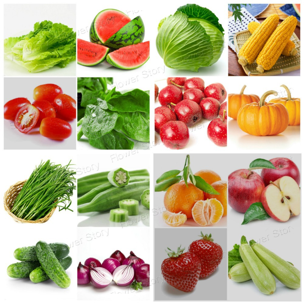 Best Vegetables To Grow In Raised Beds: 16 Different Fruits And Vegetables 2300 Seeds Package Easy