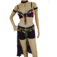 Belly Dancing Costume Set Bra Top + Skirt + Shorts + Bracelets + Necklace 6pcs Bollywood Carnival Outfits Halloween Costume