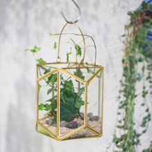 Hanging Brass Copper Gold Echelon Geometric Glass Display Terrarium Lantern Succulent Plant Wall Hanging Flowerpot with Handle
