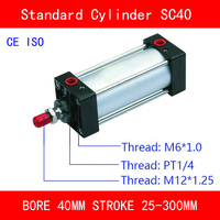 CE ISO SC40 Standard Air Cylinders Valve Magnet Bore 40mm Strock 25 to 300mm Stroke Single Rod Double Acting Pneumatic Cylinder