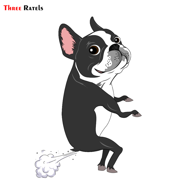 Three Ratels TRL041# 12x16.2cm Car Animal Funny Car Stickers  Boston Dog Terrier Farts Car Stickers And Decals