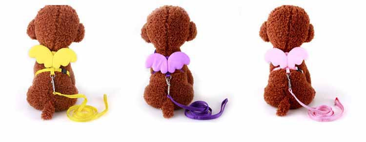 Cute Angel Pet Dog Leashes and Collars Set Puppy Leads for Small Dogs Cats Designer Wing Adjustable Dog Harness Pet Accessories Wholesale3