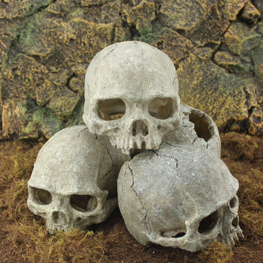 Halloween skull decorations - Aeproduct Getsubject