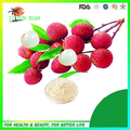 Hot sale! 100% natural freeze dried fruit powder lychee powder 600g/lot