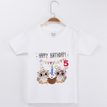 2019 New Products Best Selling Birthday T-shirt Owl 100% Cotton Kids Clothes Boy And Girl Tops Children Clothing Baby Tee Shirts