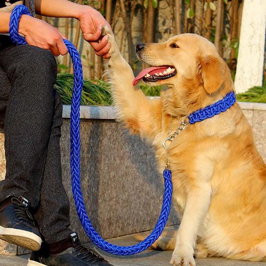 Горячие Продажи Нейлоновый ошейник - Товары для домашних животных - Фотография 6