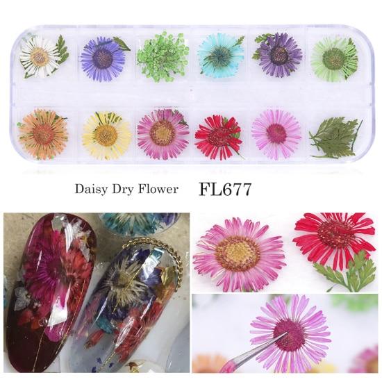Сухоцветы лист ногтей украшения натуральный наклейка в виде цветка 3D сухой для маникюра ногтей наклейки ювелирные изделия УФ Гель-лак Маникюр TRFL-1 - Цвет: FL677