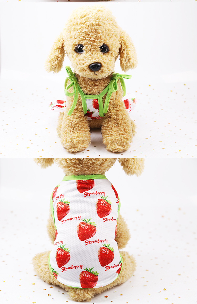 Fruit Print Little Dog Summer Dress (15)