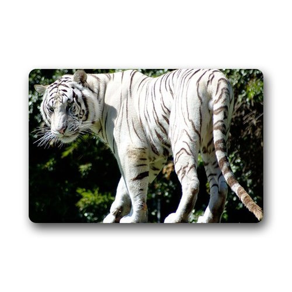 High Quality White Outdoor Rug Promotion-Shop for High Quality ...