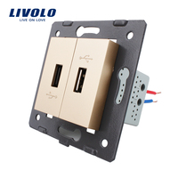 Livolo EU Standard DIY Parts Plastic Materials Function Key Golden Color 2 Gang For USB Socket