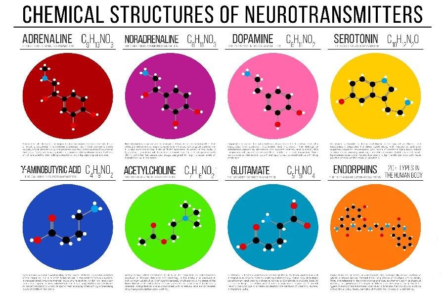 DIY marco Ciencia Química estructura química diagramas decoración de ...