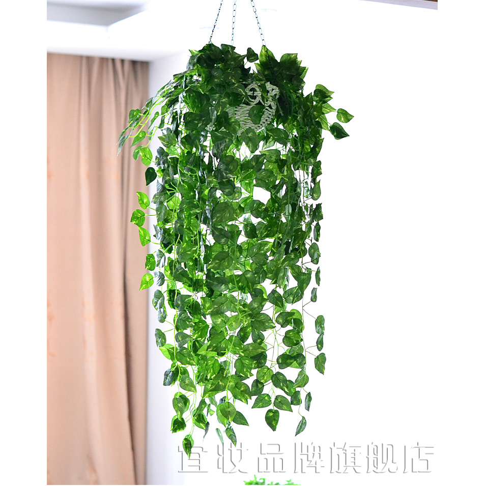 Simulation Money Plant Potted Bracketplant Suit Hanging