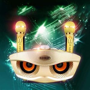 Image 3 - SDRD Wireless Karaoke Speaker Sd Dual Wireless Microphone Bluetooth Speaker Mobile Wireless Stereo 20w HOME Ktv Speaker MIC Set