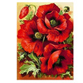 Round New DIY 3D Diamond Painting round Poppy Floral Diamond Embroidery Flowers Red picture of rhinestones 5d hobby Handicraft
