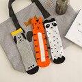 Vendimia Calcetines de Algodón Niñas Calcetines Largos de Moda Perro del Tigre de Los Niños Más Nuevos Niños de Dibujos Animados Calcetines de la Niña Accesorios 2016