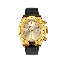 Wealthstar Mens Watches Relojes Hombre Luminous Watches 2017 New Date men Quartz Fashion Casual Sports Watches