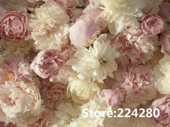 Needlework.for embroidery,DIY DMC 14CT Unprinted Beautiful carnation flowers grace Cross stitch kits Cross Stitching decor craft-in Package from Home & Garden on AliExpress - 11.11_Double 11_Singles' Day 1