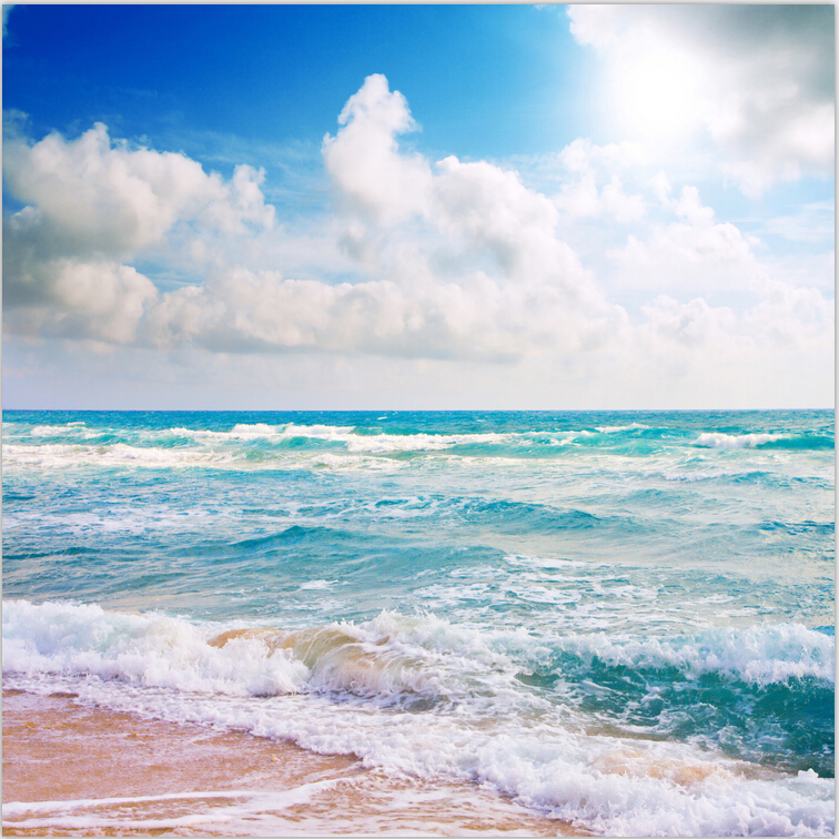 8X8ft Clouds Sky Summer Blue Sea Waves Sand Beach Custom Photography Studio Backgrounds Backdrops Vinyl F1308 sea beach blue sky backdrops vinyl cloth computer printed wedding backgrounds for sale