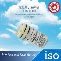 High Quality Small Air Pump 12V Brushless Motor DC Air Pump