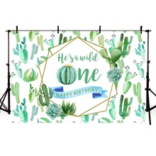 Baby Shower Birthday Party Photo Background Backdrop Lovely Cactus Wild Plants Personal Custom for Children Newborn
