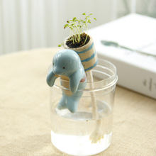 Desktop mini potted animal tail water Meng pet pot off the polar cup creative hydroponic pot wholesale