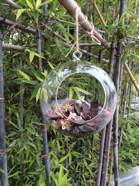 2PCS/Set Hanging Glass Orbs Air Plant Terrariums For Garden Decor,home  Decoration,