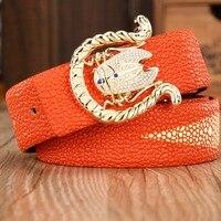 2016 New Arrival Belt For Men Women Mens Belt Luxury High Quality Hot Designer Genuine Leather