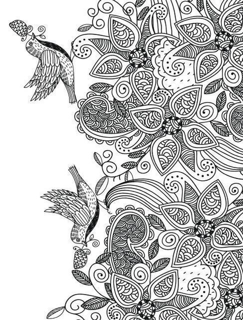 Bird Dreamland Coloring Book Secret Garden Style For Relieve Stress Kill Time Graffiti Painting Drawing