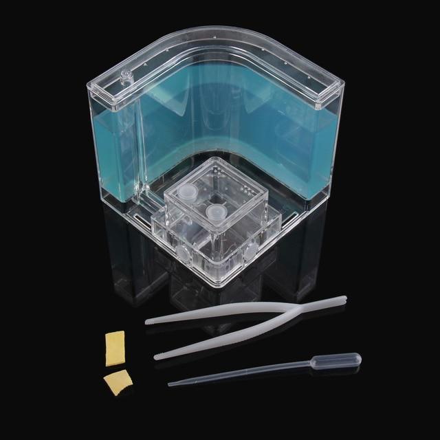 Новое поступление Лидер продаж 3D насекомых муравьи фермы наблюдается дом развивающие детские лабиринт часы жить наблюдаемый мир игрушечные л