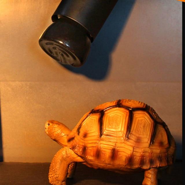 20 w/50 w/75 w/100 w e27 iluminação cerâmica infravermelho distante pet lâmpada de aquecimento para ortoise lagarto aranha réptil caixa mais quente lâmpadas