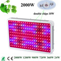 Fitolampa Green House Plant LED Plant Grow Light 1200W 900W 720W 360W 24W 2000W Double Chips Full Spectrum Fitolampy Plant Lamp