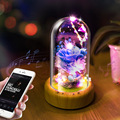Приложение креативные Bluetooth аудио Светодиодные ночные светильники  Bluetooth аудио огни  день рождения новые огни
