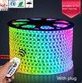 Lâmpada de cor RGB LED Luz de Tira 5050 remoto colorido com alto brilho à prova de luz sala de estar lâmpada do teto RGB 110-240 V