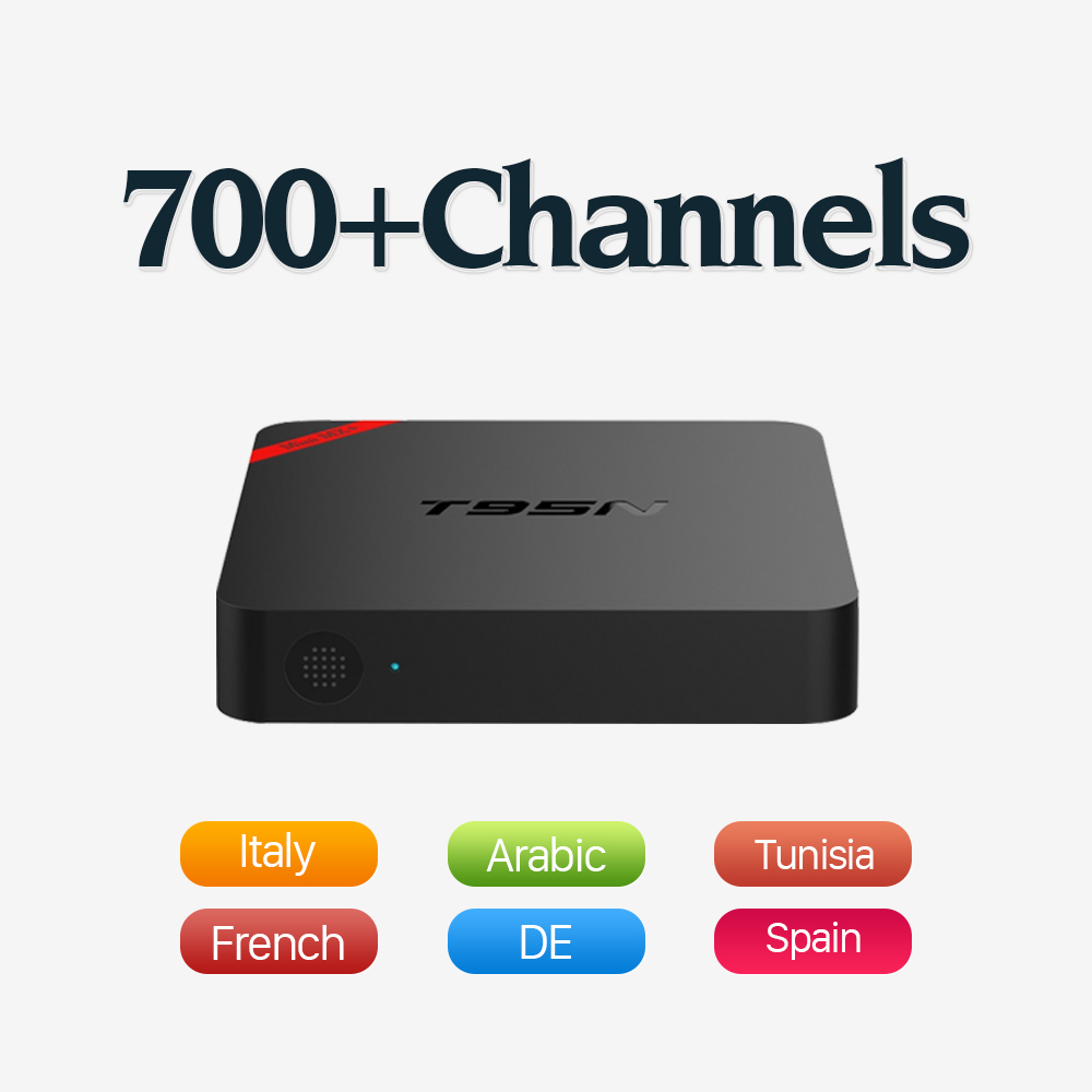 Dalletektv T95N Android 6.0 TV Box Amlogic S905X Quad Core 1G 8G Set Top Box 600 1Year Free IPTV Arabic Europe UK French TV Box malgrado 54019 1 15802
